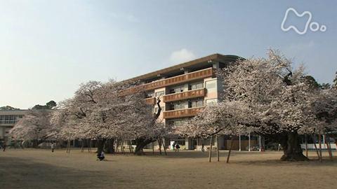 小さな旅桜の学びや~茨城県 土浦市真鍋~