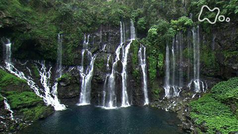 体感!グレートネイチャー滝の聖地 激流の谷に挑む!~インド洋 レユニオン島~