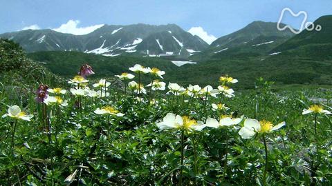小さな旅山の歌 夏 「気高き峰 ともに~富山県 立山~」