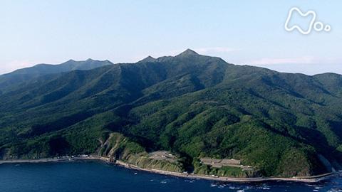 小さな旅シリーズ山の歌 夏 「花の峰 慈しみ~北海道 アポイ岳~」