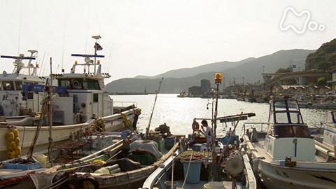 小さな旅「夏の恵み 連綿と~兵庫県 室津漁港~」