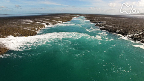 体感!グレートネイチャー「海に大激流が走る!~オーストラリア・潮の絶景~」